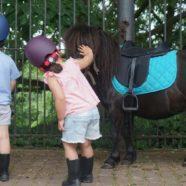 Stage poney, créativité & mouvement pour les 3-7 ans (Lasne)